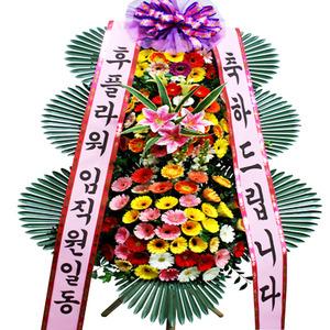 축하3단화환(신상품)